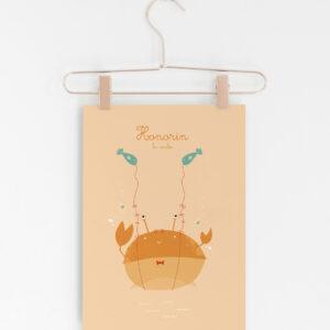 crabe cintre