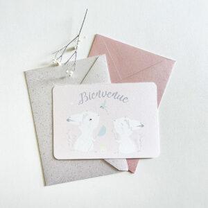 carte naissance lièvres jumelles
